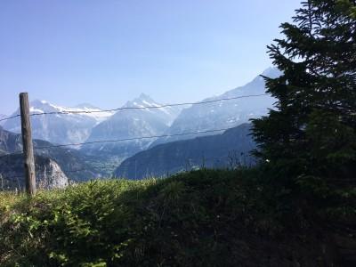 Gletscherwelt im Berner Oberland