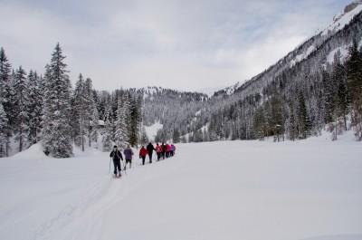 Unterwegs im Steigbachtal