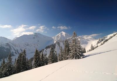Schneeschuhtage im Tannheimer Tal!