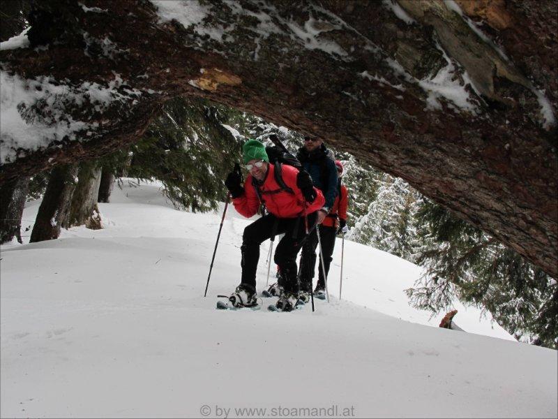 Wandergruppe im Schnee.